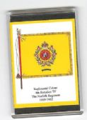 NORFOLK REGIMENT COLOURS 1909 LARGE FRIDGE MAGNET